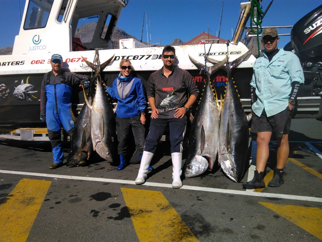 Cape town tuna fishing charter join a charter fish for Fish tales charters