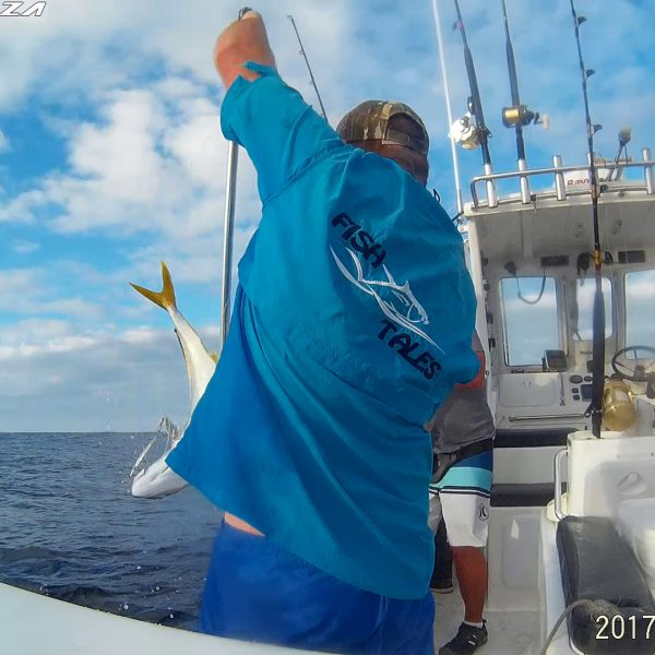 Cape Town fishing Yellowtail
