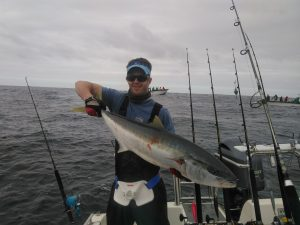 Struisbaai Yellowtail