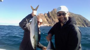yellowtail cape point