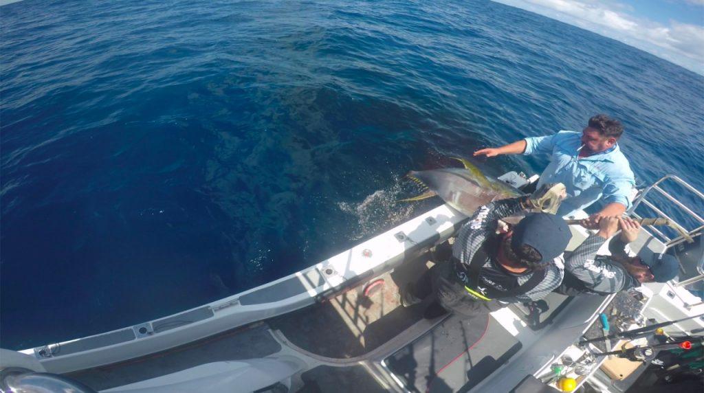 Boating Yellowfin Tuna