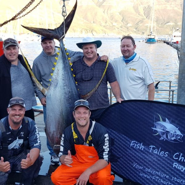 100kg Yellowfin Tuna