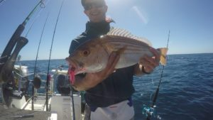 Struisbaai Fishing Jigging