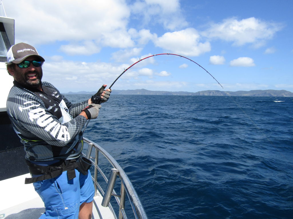 Fishing charter cape town
